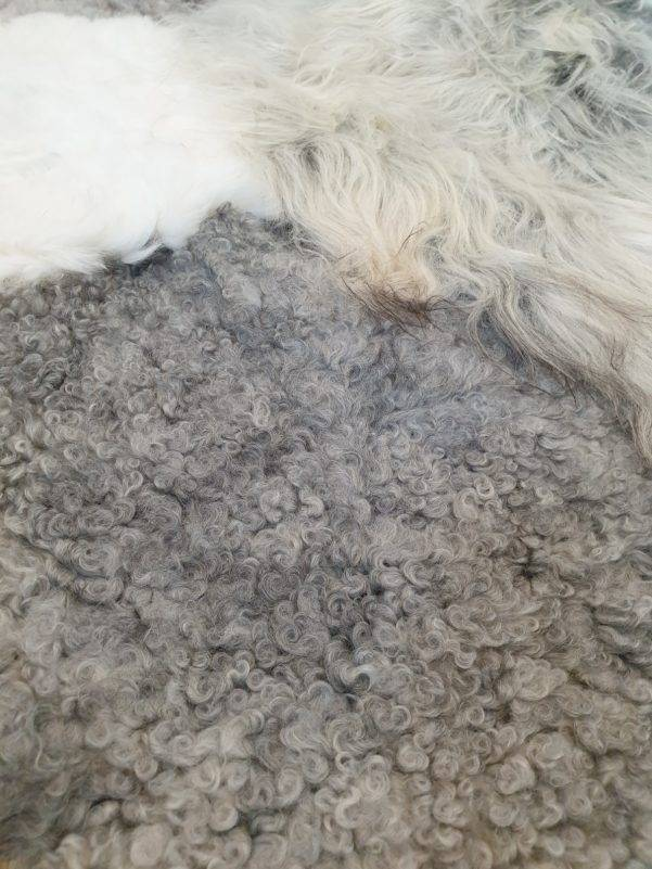 4 schapenvacht opatchwork tapijt wit en grijs detail 3 rotated - Patchwork schapenvacht tapijt grijs en wit